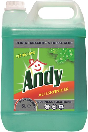 Andy Proffesional Allesreiniger, 2 x 5 L