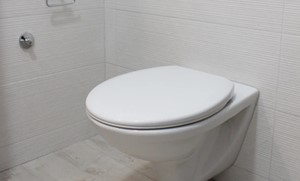 Een ruim assortiment aan sanitair reinigers, ontkalkers en geurreinigers